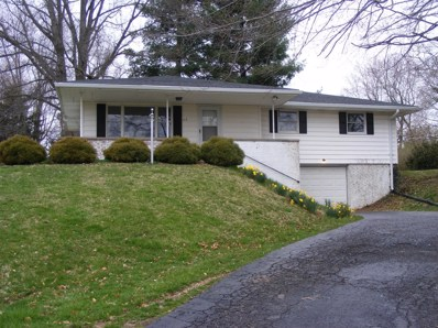 113 MT CLIFTON Drive, Mt Orab, OH 45154 - #: 1616880
