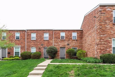 1163 WITT Road UNIT 312, Anderson Twp, OH 45255 - #: 1617431