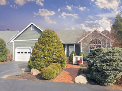 6 MARINERS Cove, Symmes Twp, OH 45249 - #: 1618510