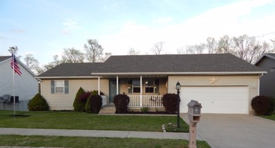 120 ELIZABETH Drive, Hillsboro, OH 45133 - #: 1618636