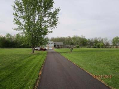 6252 STEAM FURNACE Road, Peebles, OH 45660 - #: 1620342