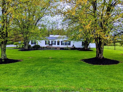 1500 RUSSELLVILLE Road, Winchester Twp, OH 45697 - #: 1620355