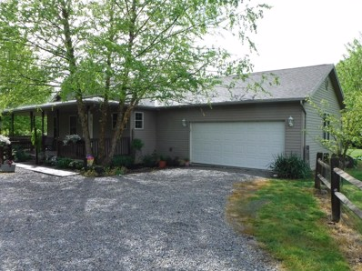 10646 TAMME Road, Jackson Twp, OH 45697 - #: 1621008