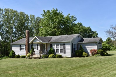 7201 HILL Road, Paint Twp, OH 45133 - #: 1621217