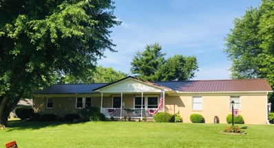203 MARY Lane, Tiffin Twp, OH 45693 - #: 1622126