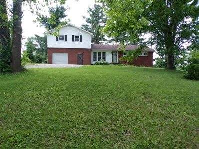 829 INLOW Avenue, Meigs Twp, OH 45660 - #: 1622970