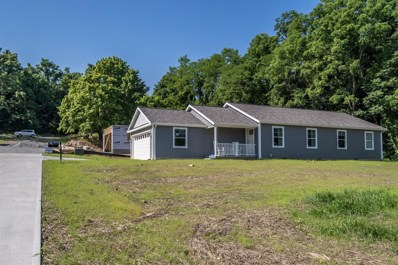 109 SPRINGLAKE Avenue, Hillsboro, OH 45133 - #: 1623677