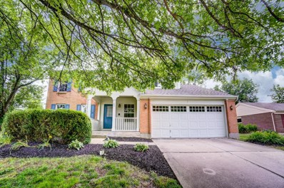1183 FOREST RUN Drive, Union Twp, OH 45103 - #: 1625580