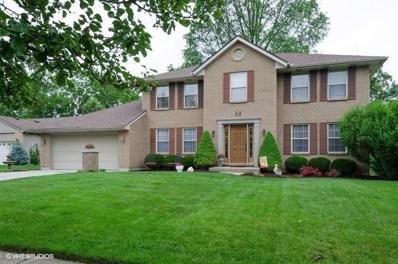 8457 TIMBER Lane, Deerfield Twp., OH 45040 - #: 1628743