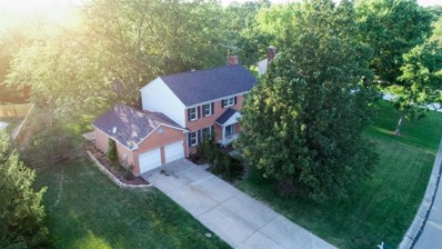 11703 SYMMES VALLEY Road, Symmes Twp, OH 45140 - #: 1633477