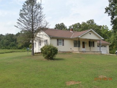 4858 OLD ST RT 32, Peebles, OH 45660 - #: 1633593