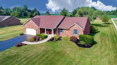 397 MITCHELL Road, Union Twp, OH 45177 - #: 1634380