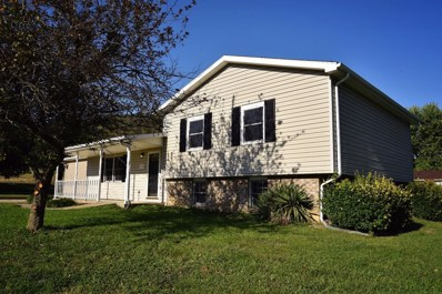 982 CEDARVIEW Drive, Manchester, OH 45144 - #: 1636032