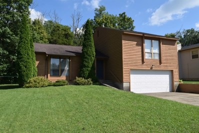 119 ACORN Circle, Oxford Twp, OH 45056 - #: 1636300
