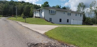38 MALCOLM Road, Meigs Twp, OH 45660 - #: 1636588