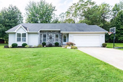 111 SPRING MEADOW Drive, Pleasant Twp, OH 45121 - #: 1638753