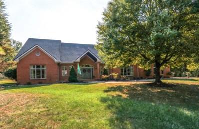 887 Country Club Drive, Pierce Twp, OH 45245 - #: 1639901