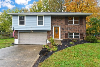 977 OLD US RT 52, New Richmond, OH 45157 - #: 1643691