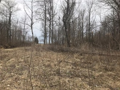 S Pitchin Road, Hustead, OH 45502 - MLS#: 759071