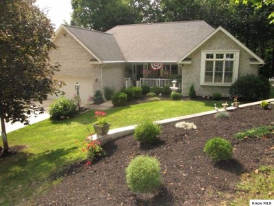 3381 Apple Valley Drive, Howard, OH 43028 - #: 20180780