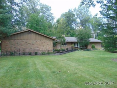 14933 County Road 66A, St. Marys, OH 45885 - #: 106342
