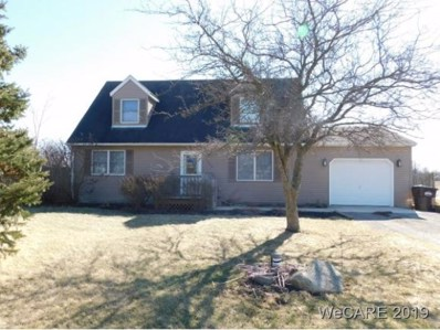 11695 Co Rd 87, Lakeview, OH 43331 - #: 111613