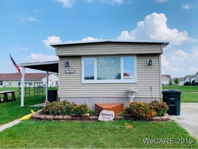 20 Summerplace Drive, Wapakoneta, OH 45895 - #: 113836