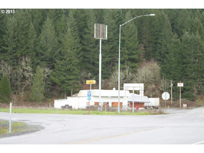 464 Bear Creek Rd, Cottage Grove, OR 97424 - MLS#: 13174941