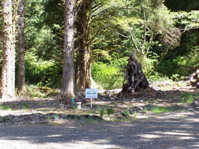 Oceanview Ln, Arch Cape, OR 97102 - MLS#: 13197288