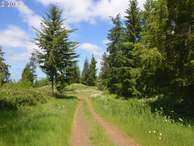 Gary Sipe Rd, Coquille, OR 97423 - MLS#: 14104238