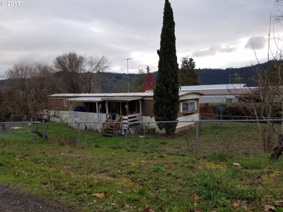 101 NE Darrell Ave, Winston, OR 97496 - MLS#: 17058439