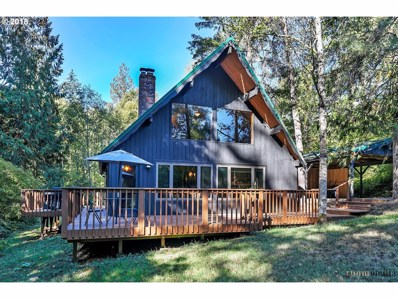 22441 NW 220TH Ave, Portland, OR 97231 - MLS#: 18025474