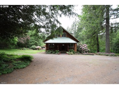 24217 NE Courtney Rd, Yacolt, WA 98675 - MLS#: 18093166