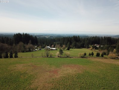 NE 169th St, Brush Prairie, WA 98606 - MLS#: 18110215