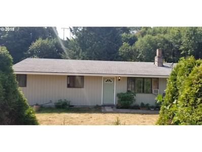 905 NE 117TH St, Vancouver, WA 98685 - MLS#: 18277907