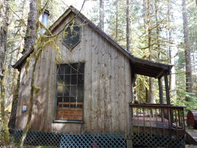 28354 E Road 20, Rhododendron, OR 97049 - MLS#: 18524537