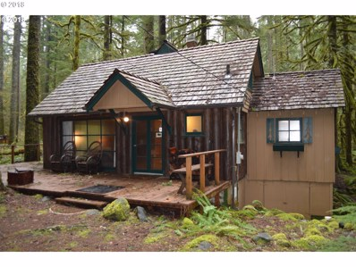 28111 E Road 20D, Rhododendron, OR 97049 - MLS#: 18583299