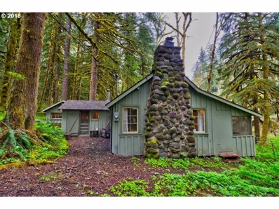 29007 E Road 20 Lot 62, Rhododendron, OR 97049 - MLS#: 18619808