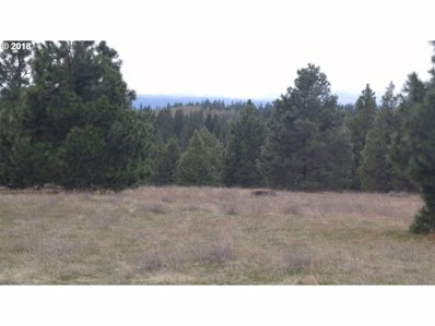 Mt. View Rd, Lyle, WA 98635 - MLS#: 18662898