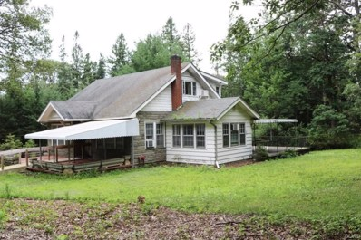 310 Park Avenue, Mount Pocono, PA 18344 - MLS#: 588465