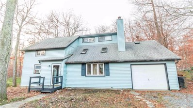 5116 Iroquois Street, Coolbaugh Twp, PA 18466 - MLS#: 596375