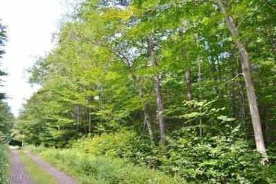 Wapiti Way, Eagles Mere, PA 17731 - #: WB-80597