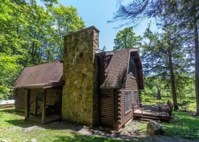30 Carl Rider Road, Eagles Mere, PA 17731 - #: WB-84494