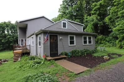 157 Hales Lyon Road, Montoursville, PA 17754 - #: WB-84553