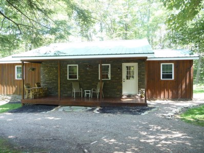 19010 N Route 44 Highway, Lock Haven, PA 17745 - #: WB-85142