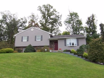 2325 Be Daro Drive, S. Williamsport, PA 17702 - #: WB-85451