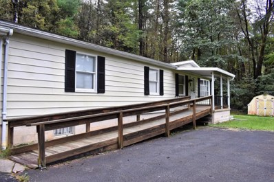 140 Hunter Hollow Road, Lock Haven, PA 17745 - #: WB-85499