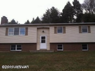 528 Field Station Road, Trout Run, PA 17771 - #: WB-85525