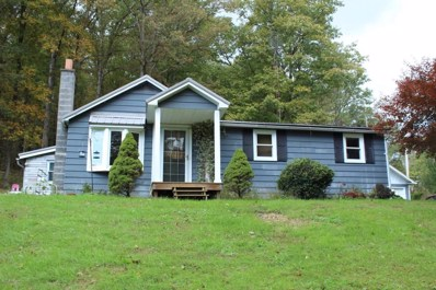 421 Spook Hollow Road, Linden, PA 17744 - #: WB-85743