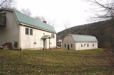 969 Green Valley Road, Hughesville, PA 17737 - #: WB-86093